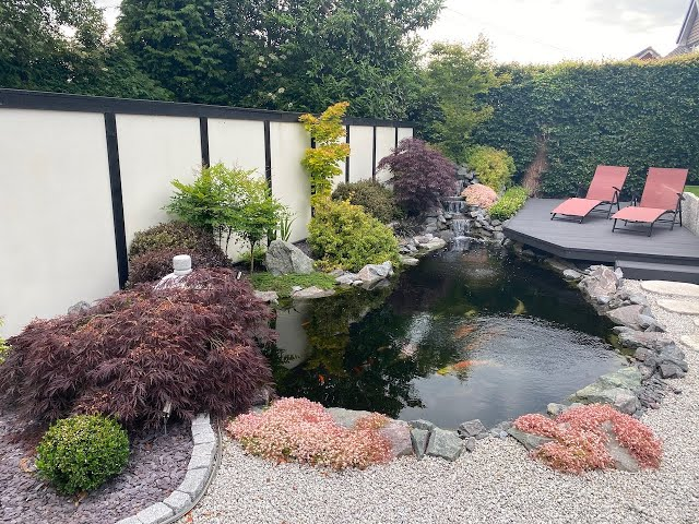 4000 Gallon Japanese Koi Pond. STUNNING POND!!
