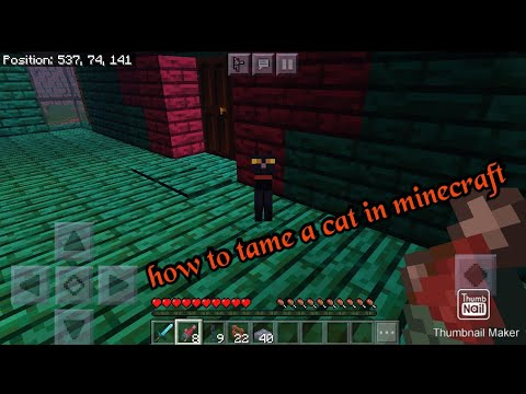 how-to-tame-a-cat-in-minecraft-on-android