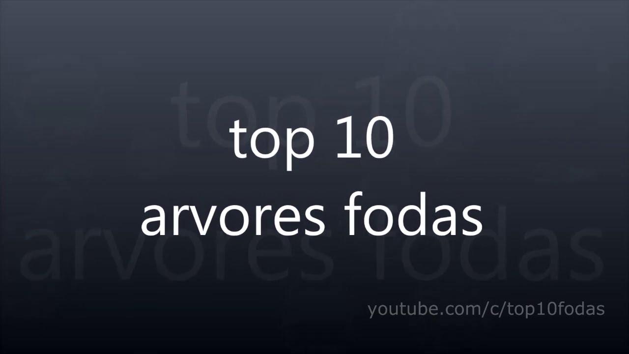 top 10 arvores só as melhores