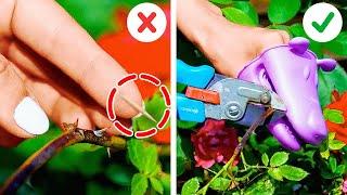 Growing Plant Hacks And Easy Garden Organization Ideas
