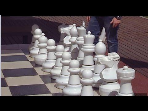 El ajedrez: gimnasio para neuronas