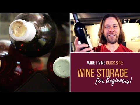 Wine Storage For Beginners: 7 Easy Tips From A Professional