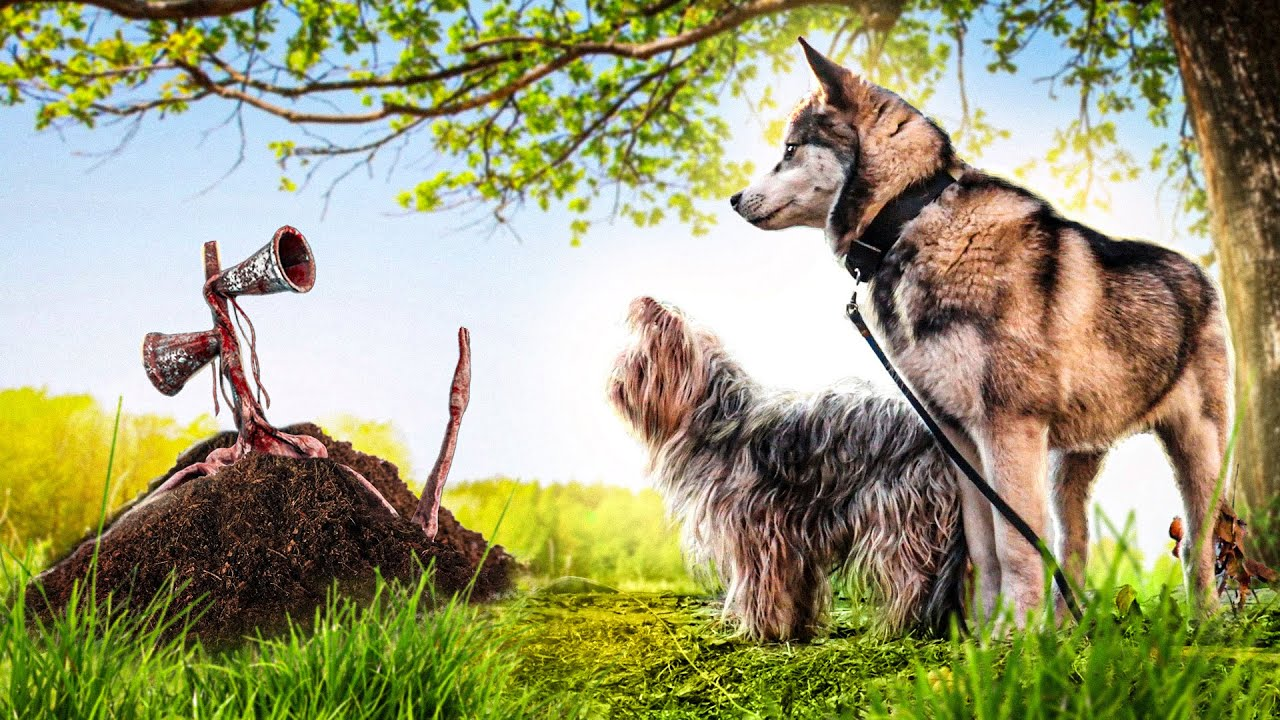 Мы Закапали СИРЕНОГОЛОВОГО!!! (Маленький Зевс) Говорящая собака | Little Zeus