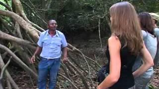 CAMEROUN VISION A Ebogo-Kossipo.mp4