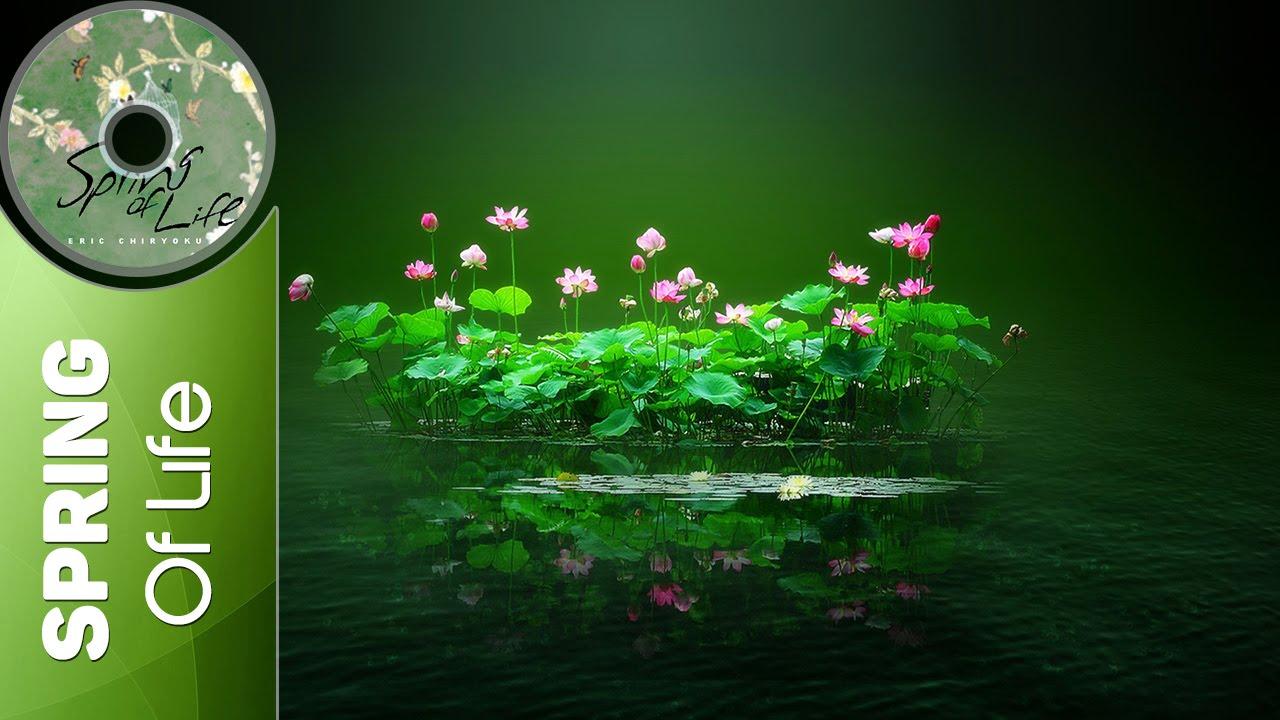 Eric Chiryoku Lotus Flower Spring Of Life Youtube