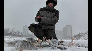 ВО ДВОРЕ МНОГОЭТАЖКИ РАЗДАЕТ ОКУНЬ Первый лед 2019 2020 балансир first ice fishing perch