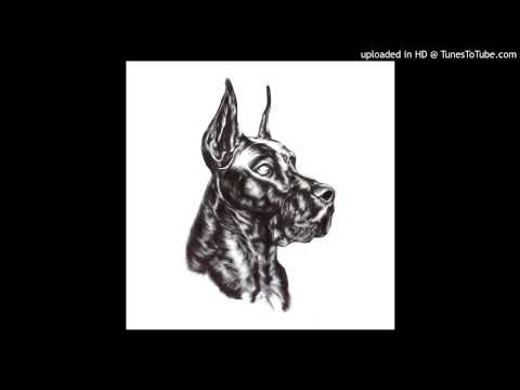 Great Dane - Blck & Wht