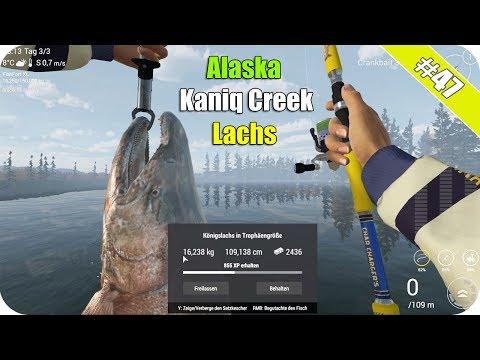 Fishin Frenzy: Gute Freispiele mit über 4€ Einsatz! from YouTube · High Definition · Duration:  3 minutes 15 seconds  · 8.000+ views · uploaded on 27.01.2017 · uploaded by GambleJoe