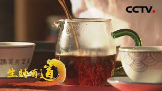 《生财有道》 20210405 乡村振兴中国行——广西梧州:红土 黑茶 春天财| CCTV财经 - YouTube