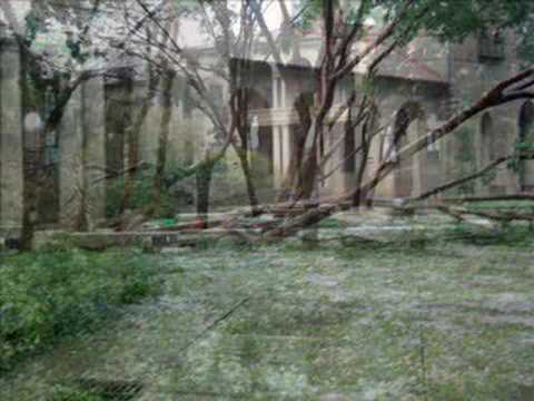 Hurricane Gustav Baton Rouge Youtube