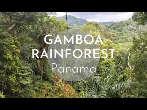 Gamboa Rainforest, Panama | 2019