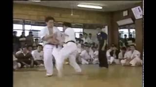 art of kumite kancho shokei matsui.