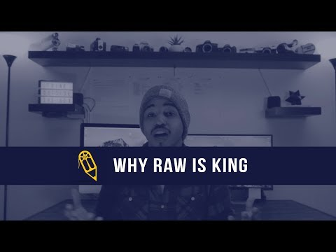 The Visualist's Guide - Why is RAW king? (raw vs jpeg in photography & video)