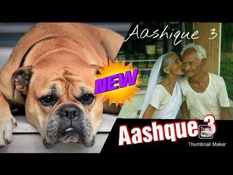 Download ??Ye dekhiye old man masti ye hai AASHQUE 3 (Jarur dekhe )!!!!???🤗🤗🤗🤗🤗!Funny video baba!!😀😀