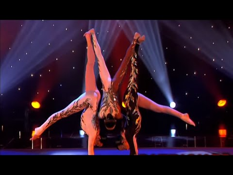 The Cats - Acrobatic & Contortion Act - The world greatest Cabaret