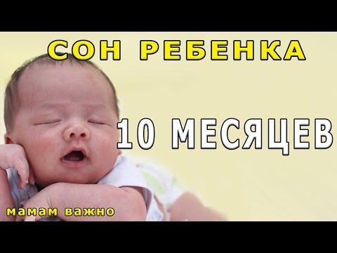 Сон ребенка в 10 месяцев
