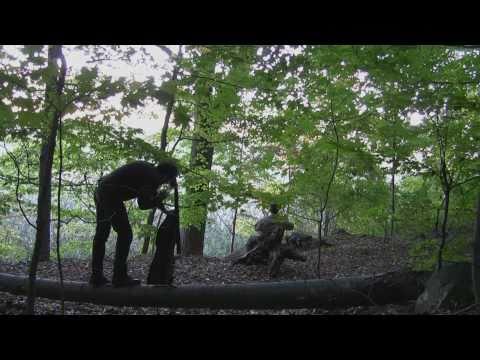 Piermont Marsh Tallman Mountain duet 1