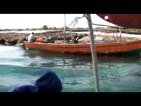 Sailing Mozambique Vilanculo/ Dolphin Dhow Safaris  2010