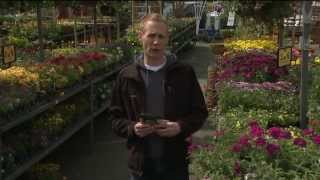Gardening with Tim: Planting Seeds