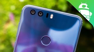 Honor 8 Camera Feature Focus!
