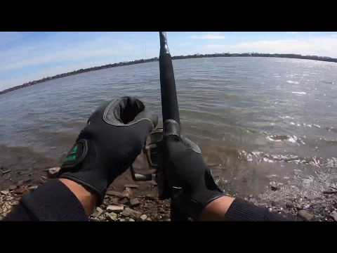 Fishing The Delaware River For Striped Bass.