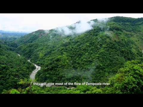 Calmecac Xochipilli: Sierra Norte de Puebla en defensa de la vida