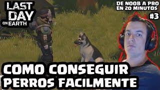 COMO CONSEGUIR PERROS FÁCILMENTE | LAST DAY ON EARTH: SURVIVAL (DNAP #3) | [El Chicha]