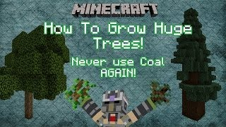 Minecraft Tips and Tricks: How to grow big trees / Never use coal again!