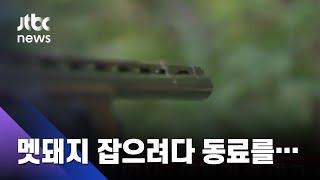 멧돼지 잡으려 쫓던 40대…동료 엽총에 참변  / JTBC 사건반장