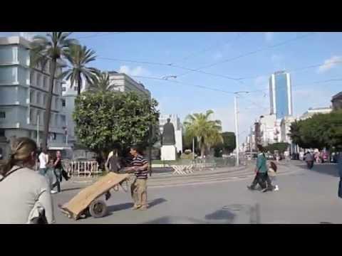 Take a Walk in Tunis City
