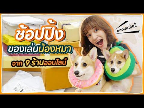 ช้อปปิ้งของใช้น้องหมา จาก 9 ร้านออนไลน์ จะมีอะไรบ้างนะ !? 🍊ส้ม มารี 🍊