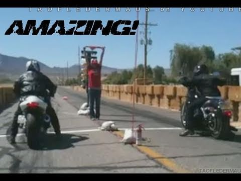 Hayabusa vs HARLEY - Ultimate MISMATCH Drag Race