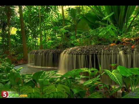 Most Beautiful Gardens In The World Youtube - beautiful garden pictures of the world
