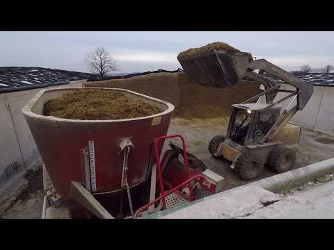 Mixing Feed For Dairy Cows