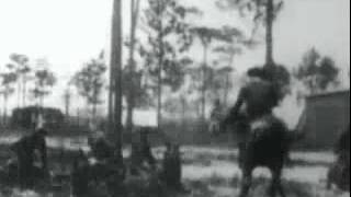 1898 Trained cavalry horses