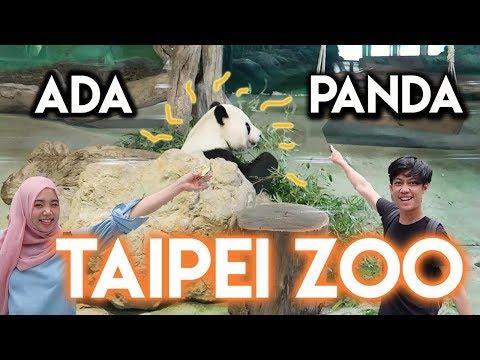 KITA JALAN-JALAN   Keliling Taipei Zoo! #TAIWAN