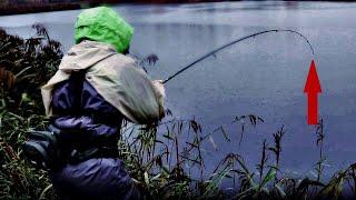 Рибалка В Дощ. Уловисті КОЛЕБЛО. ЩУКА на спінінг #133