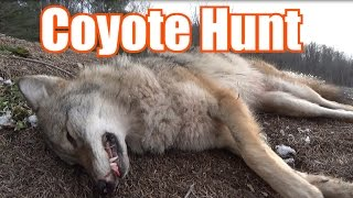 COYOTE HUNT with Kill Shot 2016