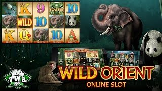 Wild Orient Online Slot from Microgaming
