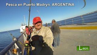 Pesca en Puerto Madryn, ARGENTINA.
