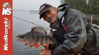 Okoniowe Jezioro Obfitości – Jacek Kolendowicz i jego syn Maciej łowią