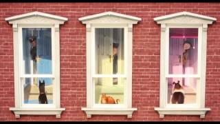 Реклама выход из 2016 г. Тайная жизнь домашних жив