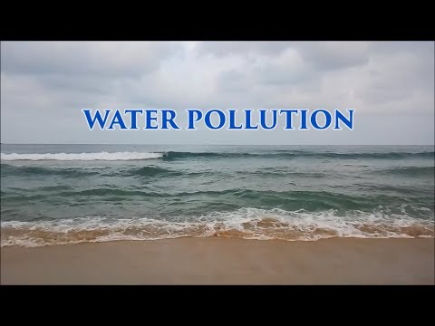 SEOW TW Environment Management Group 1 - Water Pollution