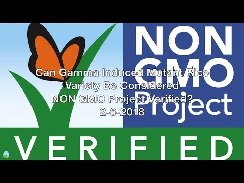 Can Gamma Induced Mutant Rice Be Considered NON GMO Project Verified? 2-6-2018 | Organic Slant