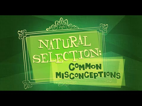 Good Thinking! — Natural Selection: Common Misconceptions