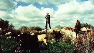 Kill Bill vol. 1. Soundrack (The Lonely Shepherd) _ Gheorghe Zamfir