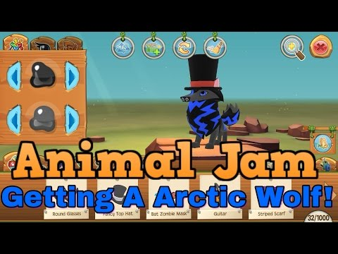Getting A Arctic Wolf! AJ Play Wild - YouTube
