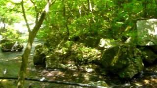 栃木県塩原の不動の湯 川と遊歩道に挟まれた露天風呂(共同浴場)です。...