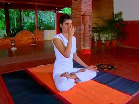 Nadi Shodhana Pranayama Yoga In Hindi