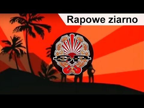 ABRADAB - Rapowe ziarno [OFFICIAL VIDEO]
